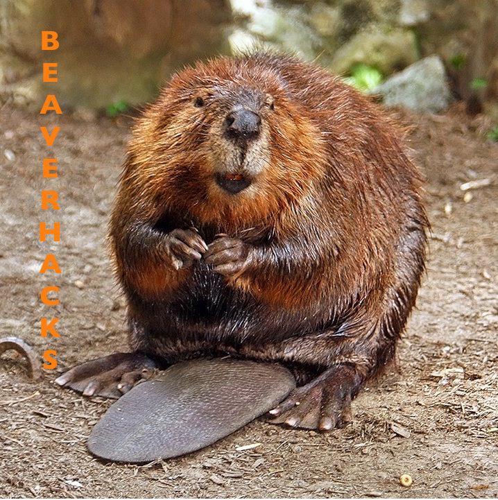 Beaver hacks
