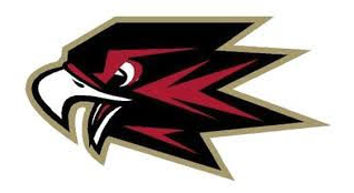 Skyhawks dont even exist, so why are they a high school mascot?