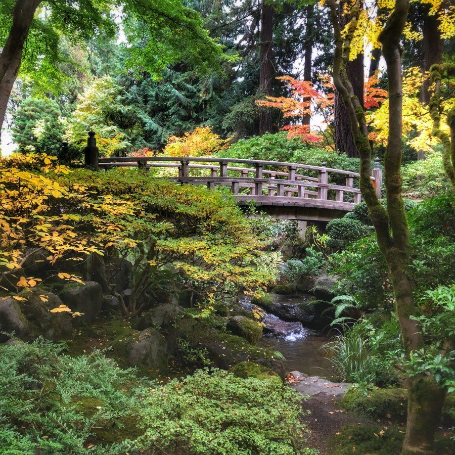 Experience+the+renowned+Japanese+Garden%2C+a+place+of+culture+and+history.%0D%0A