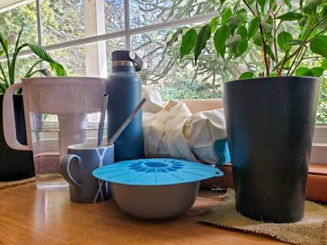 An assortment of reusable items and plants sit by a window.